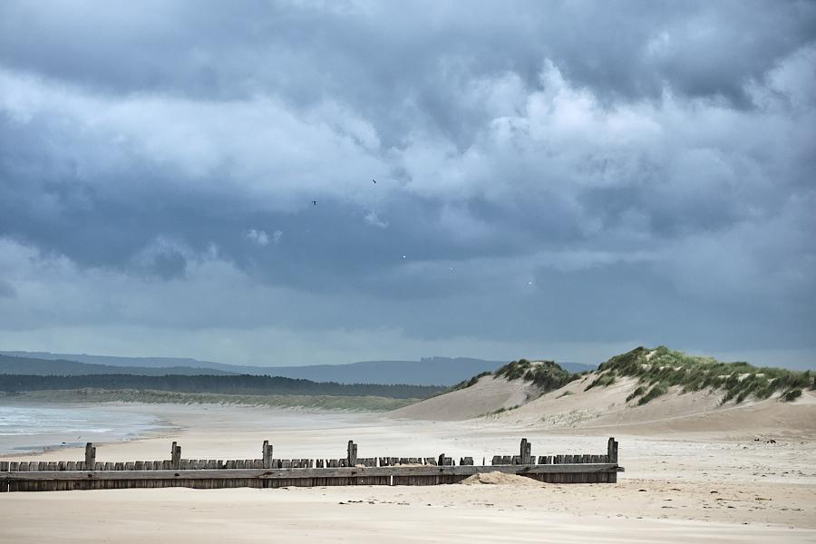 Wind Blown Dunes