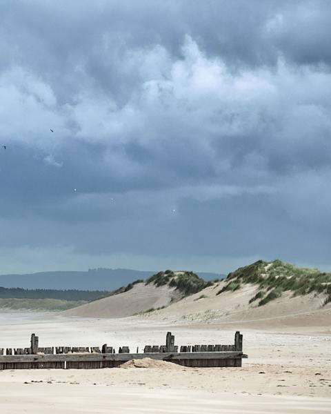 East Beach Dunes