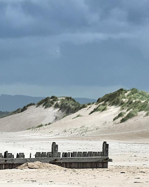 Wind Blown Dunes - (Long Version)