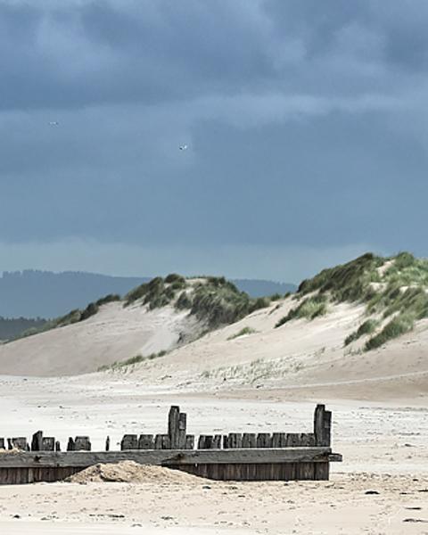 Wind Blown Dunes (Long)