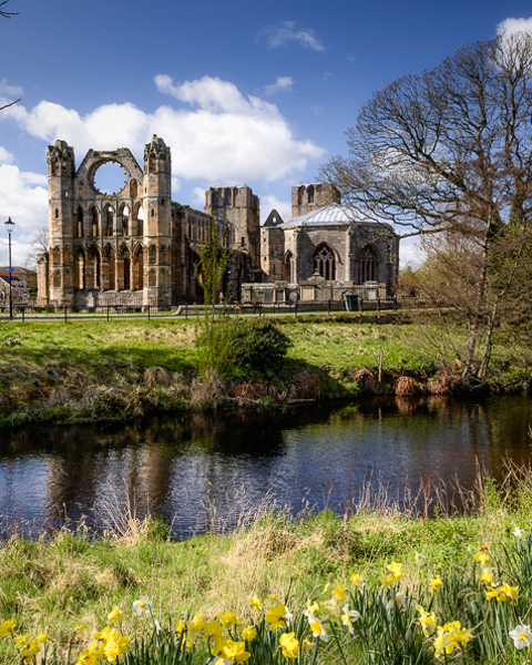 Spring - Elgin Cathedral